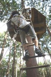 はしごを登って