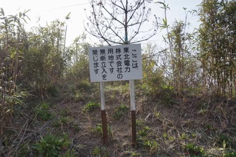 kakumi004.JPG