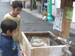 onsen_egg.JPG