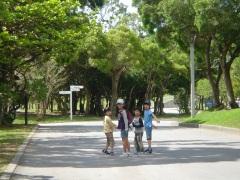 緑いっぱいの広い公園