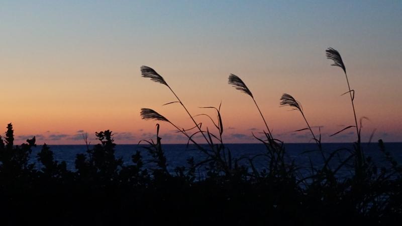 sunset0915_4.JPG